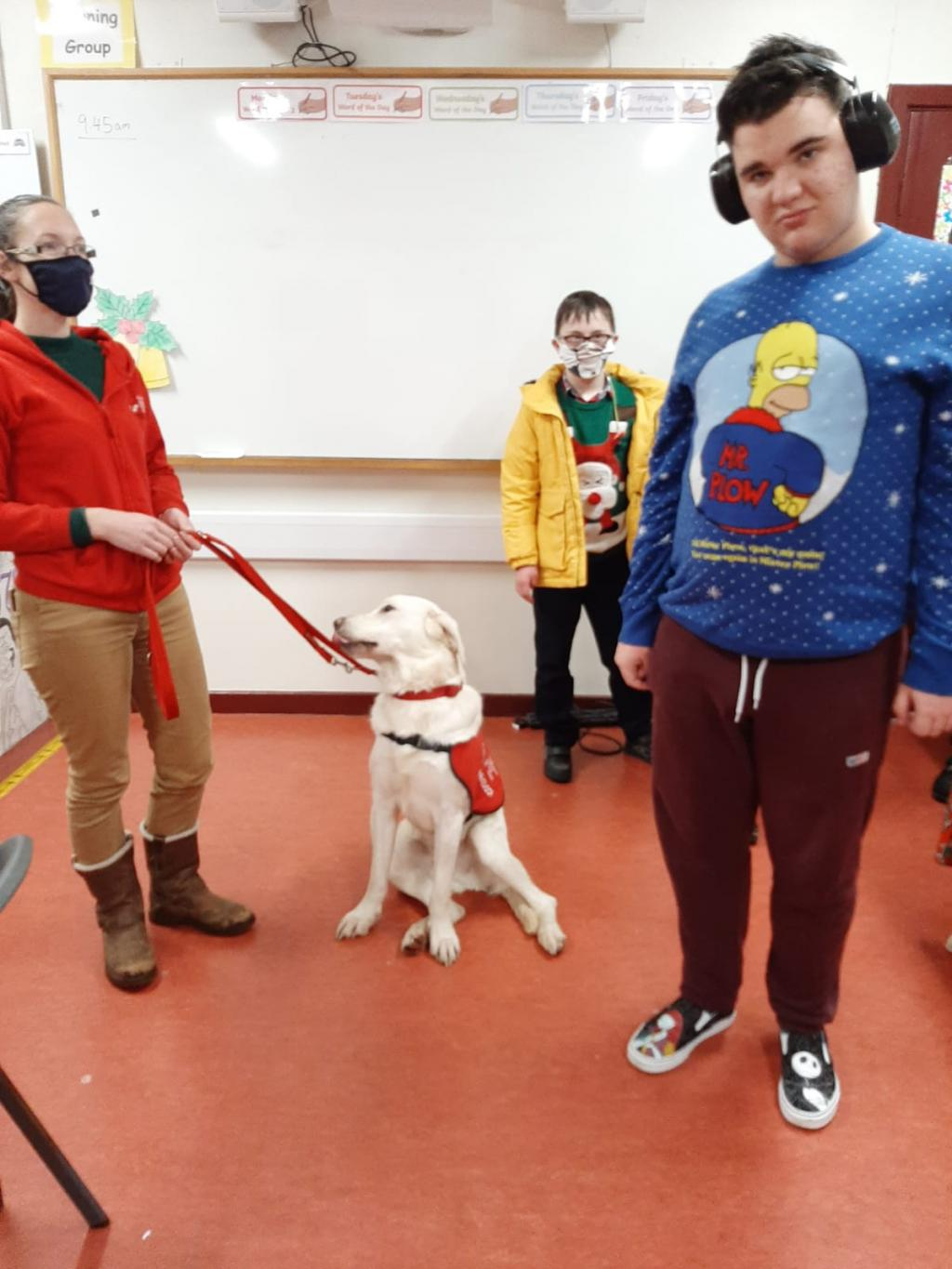 Autism assisted Dogs Ireland visit Cuan class.